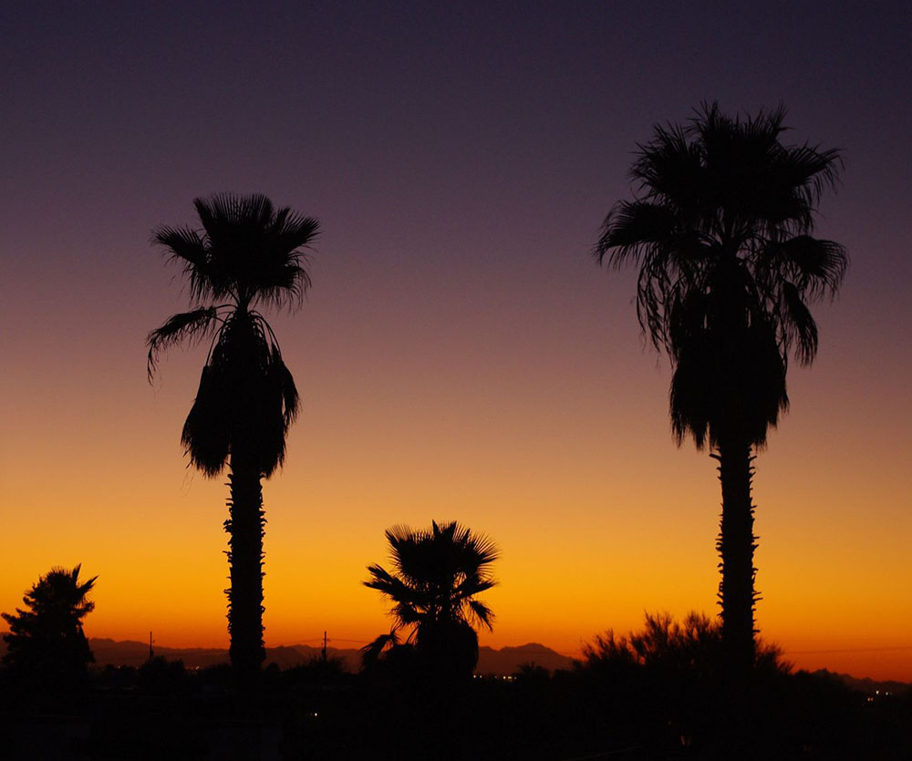 Sunset in Tucson.